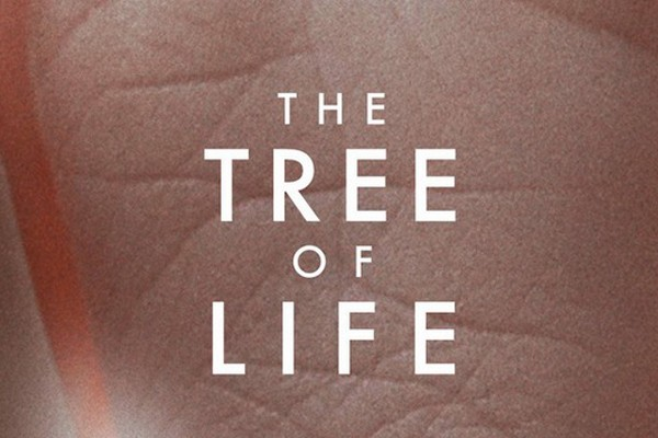 Movie Review : The Tree of Life (2011)